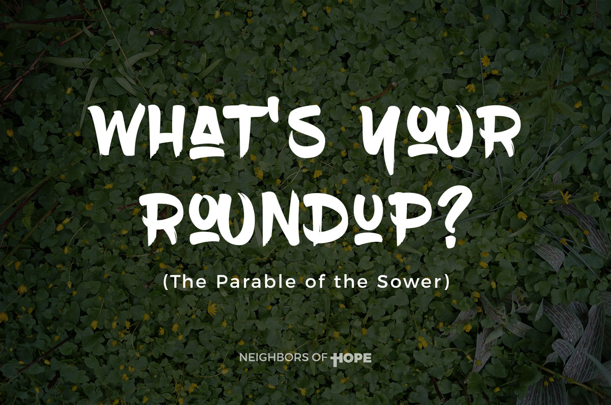 What's Your Roundup?