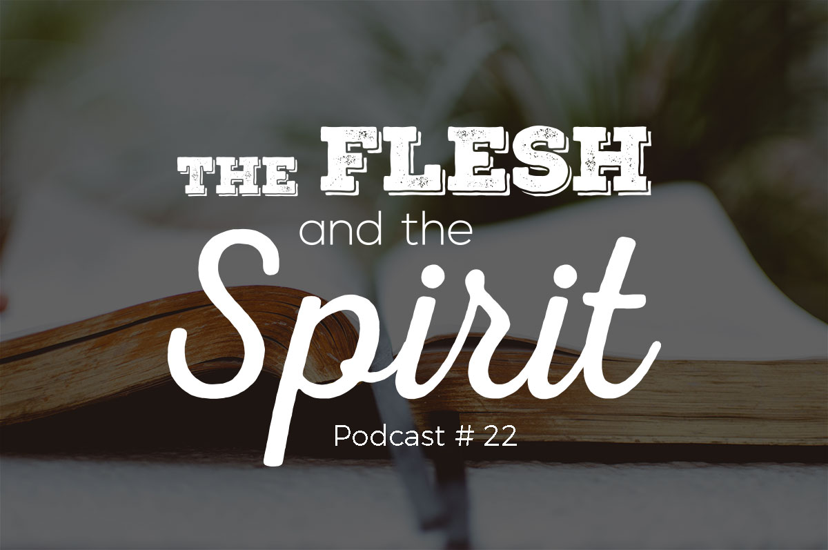 the flesh and the spirit A christian devotional from galatians 5:17 in god's word about the battle  between the flesh and the spirit.