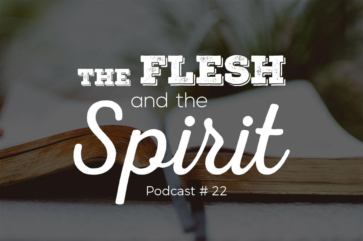 the flesh and the spirit pdf